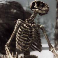 Skyrim - Скелеты чудовищ / Beast Skeletons