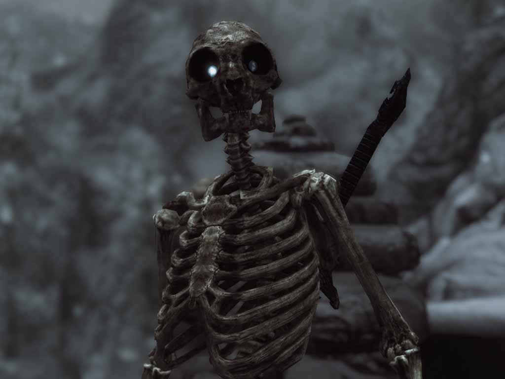 такой ходячий скелет фото алкозависимости