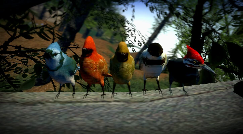Garry's Mod 13 - Маленькие птички