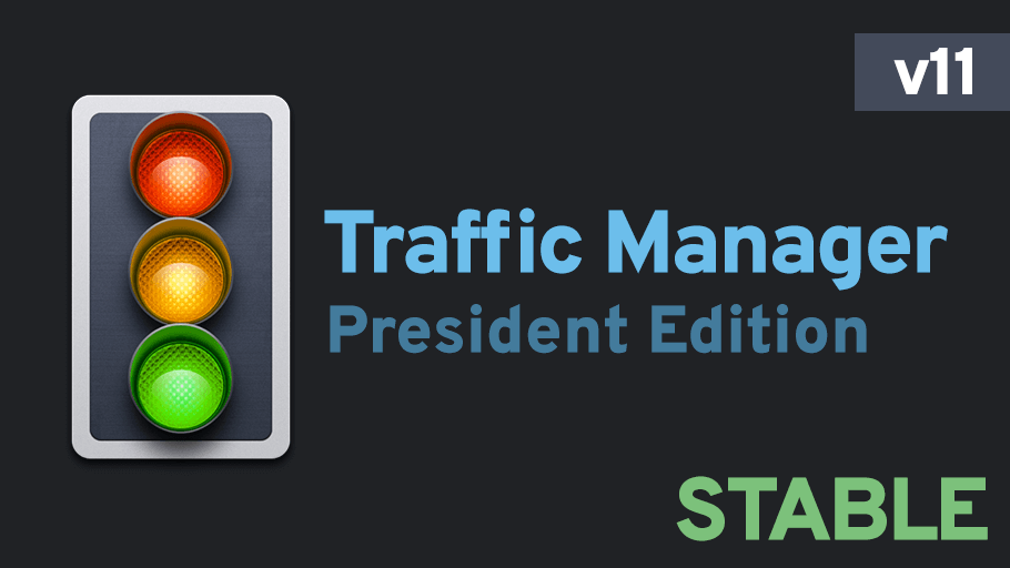 Cities: Skylines - Traffic Manager: President Edition