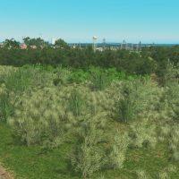 Cities: Skylines - Дикорастущие кустарниковые растения