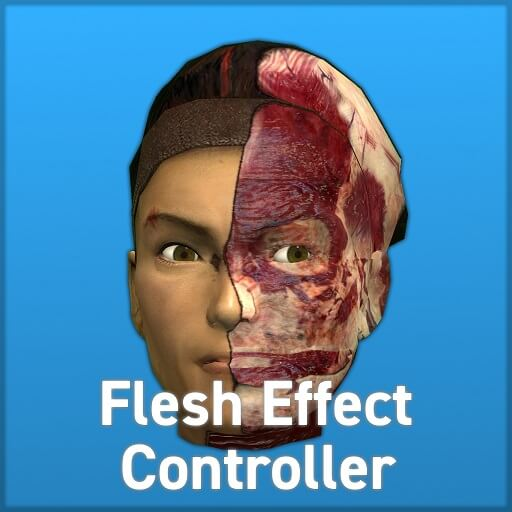 Garry's Mod - Flesh Effect Controller